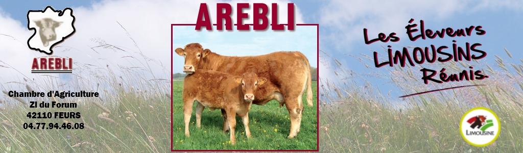 Arebli Logo